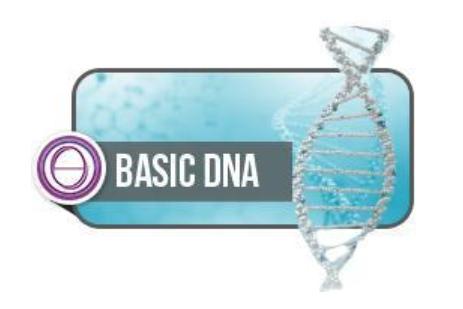 Energy Clearing Seminar in Hawaii - ThetaHealing Basic DNA Seminar Hawaii