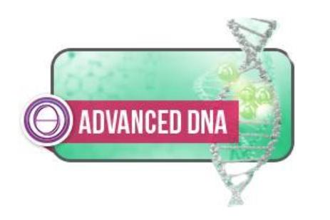 Energy Clearing Seminar in Hawaii - ThetaHealing Advanced DNA Seminar Hawaii