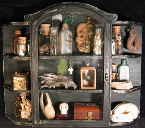 Amazon.com—   Cabinets of Curiosities