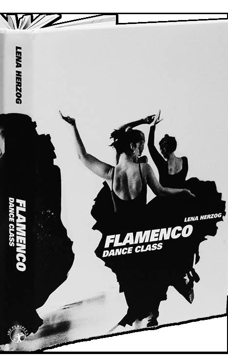 flamenco_book_opened.png