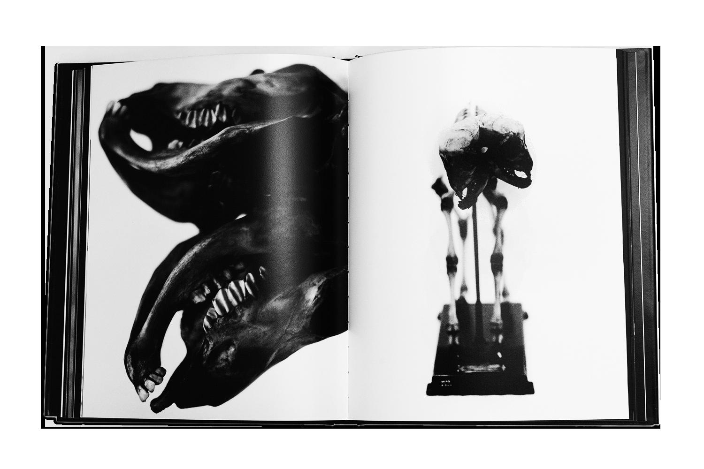 BOOKS_LS_9.png