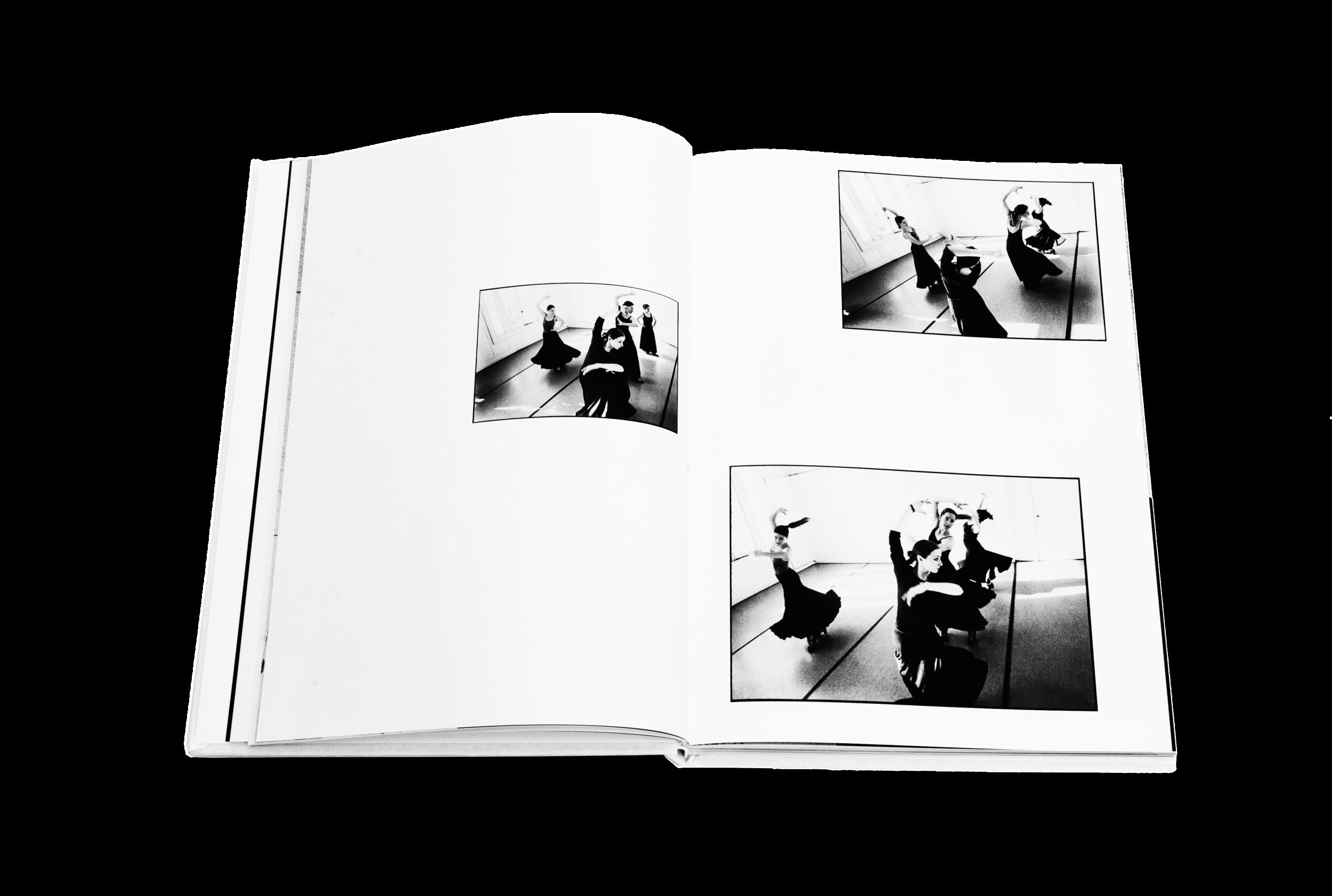 Books_Flamenco_3.png