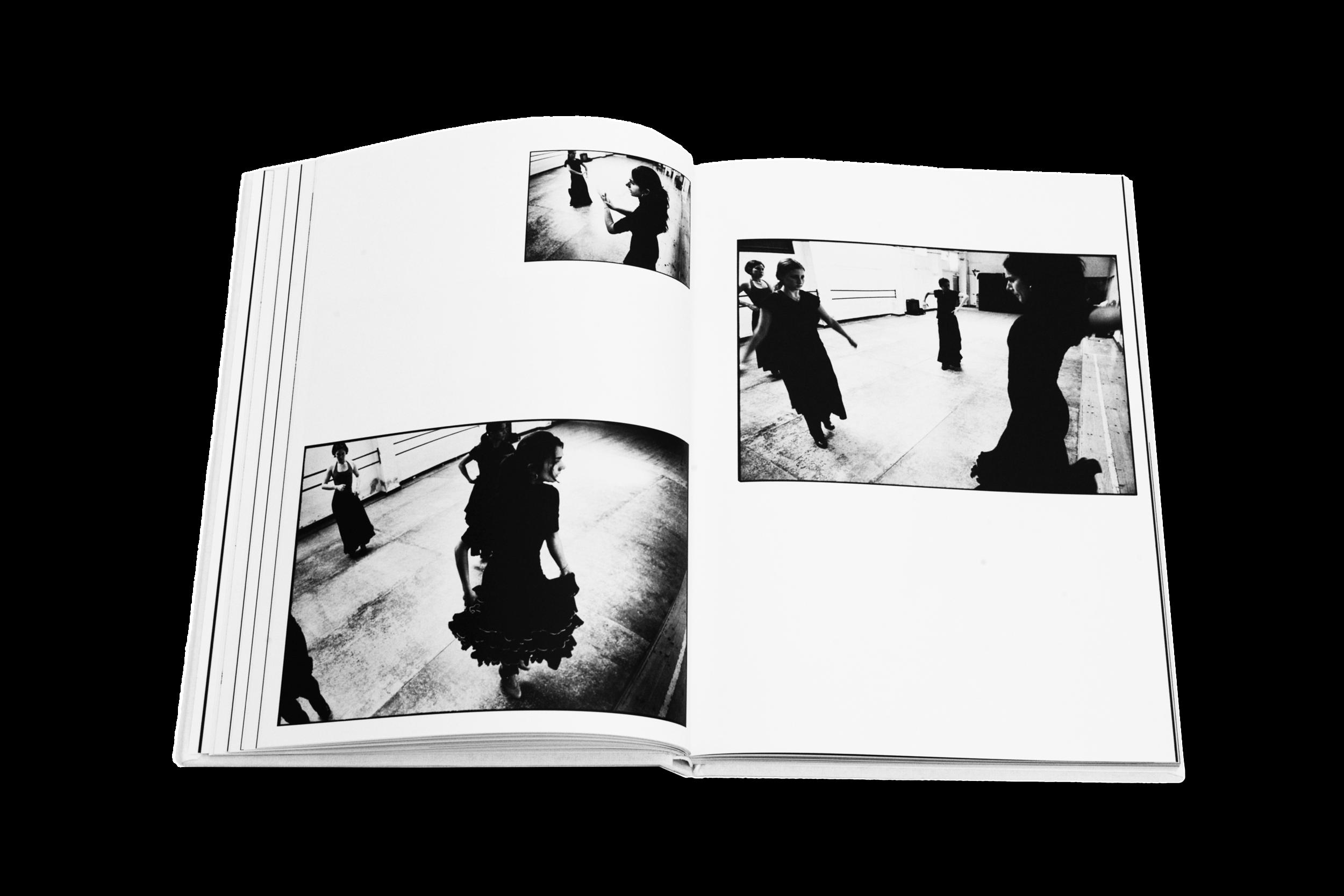 Books_Flamenco_5.png