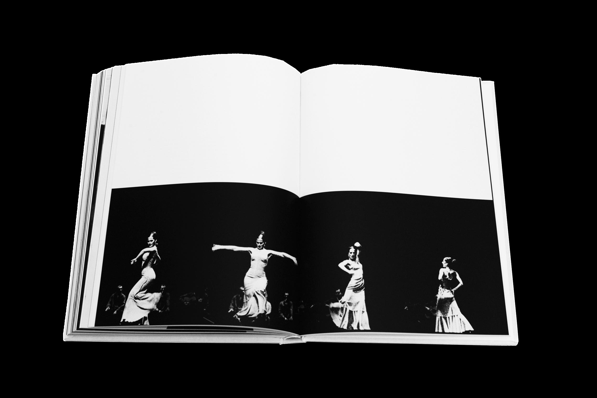 Books_Flamenco_7.png