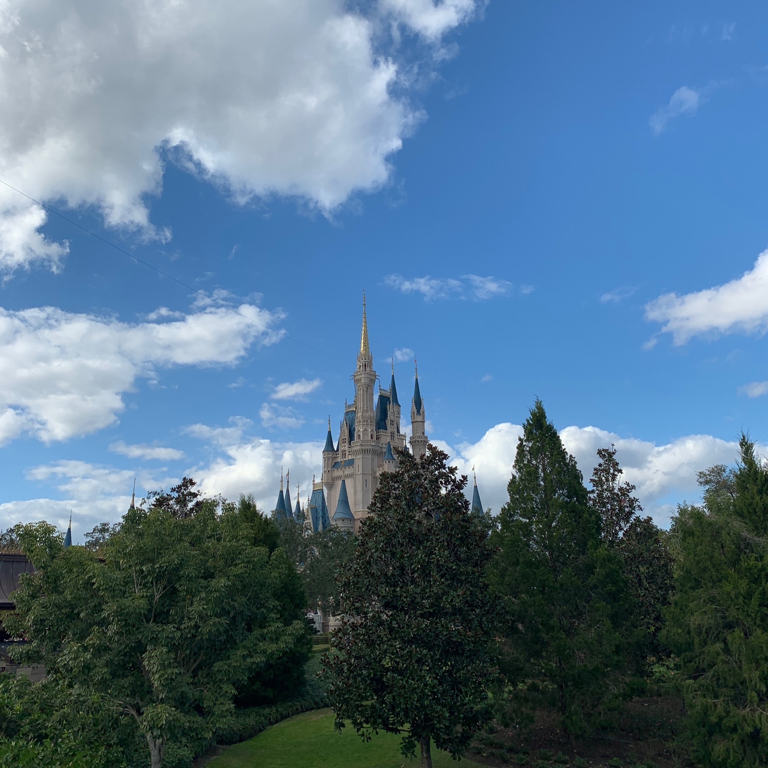 Disney's Magic Kingdom Castle