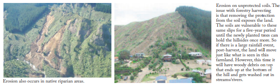 Photos taken in the Tapuaeroa Valley show the effects of erosion from forestry. Credit - Eastland Wood Council.
