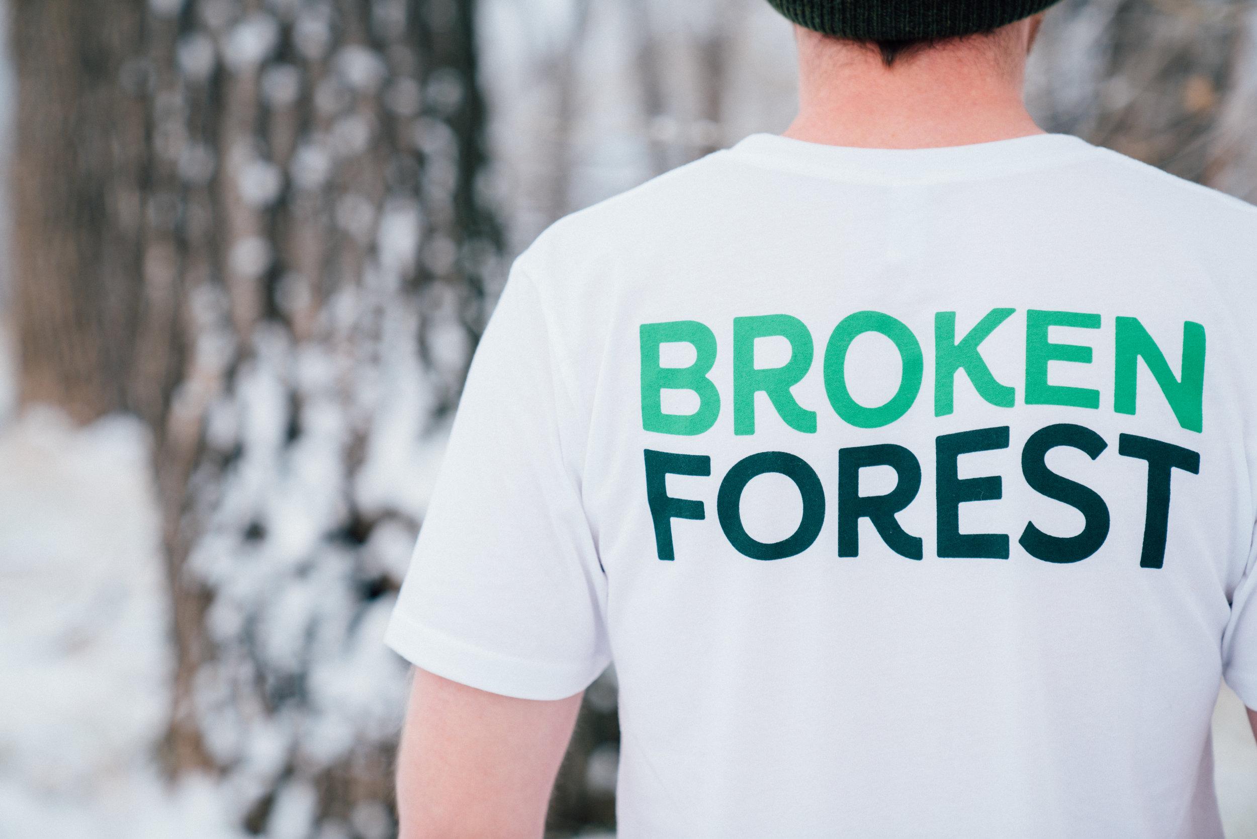 Broken Forest Line 4-19.jpg