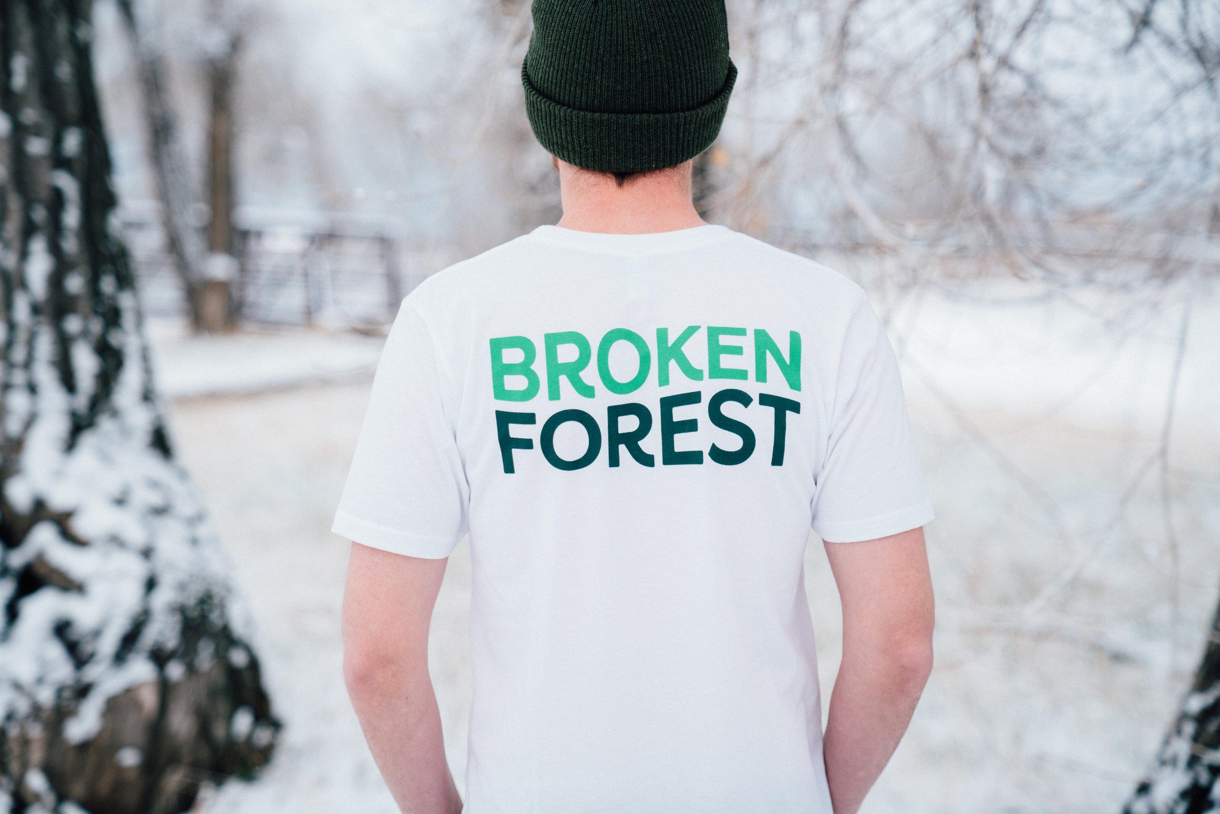 Broken Forest Line 4-18.jpg