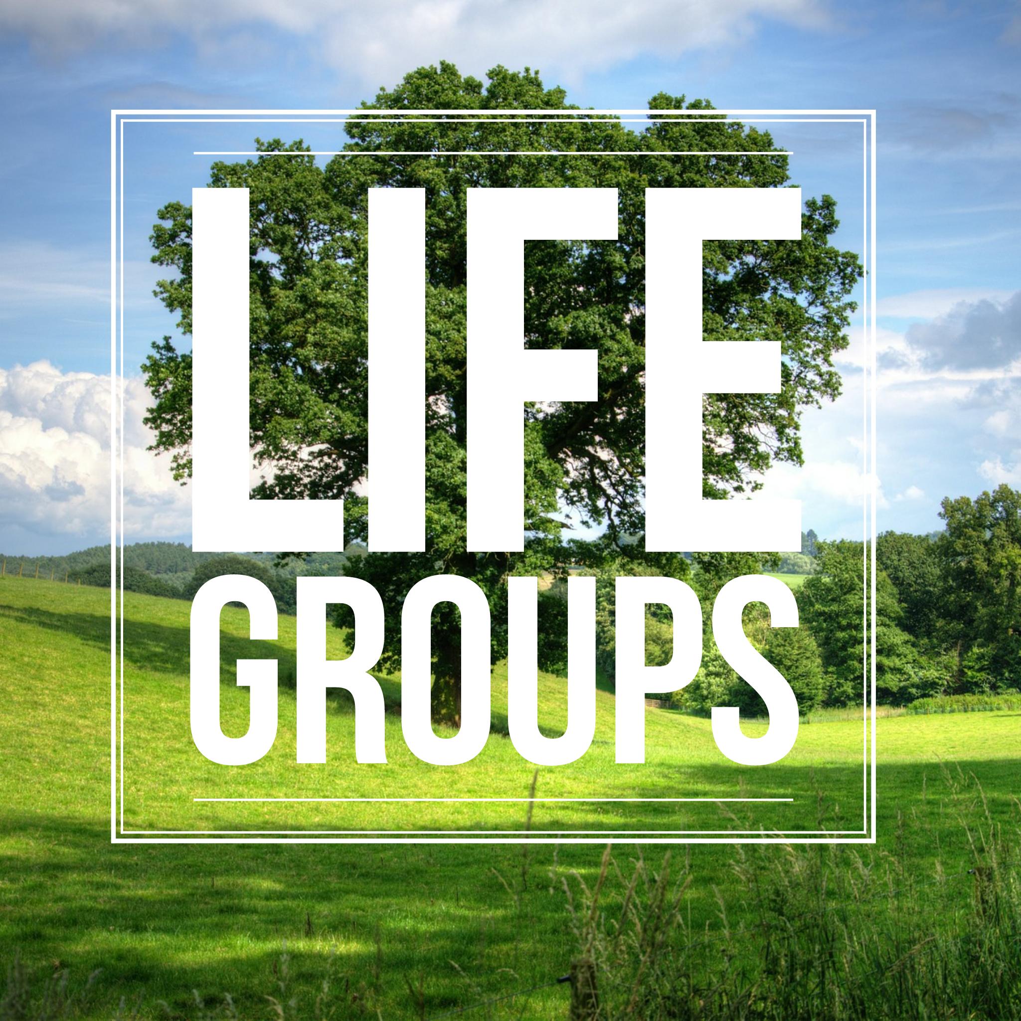 SCF_Life groups pic.png