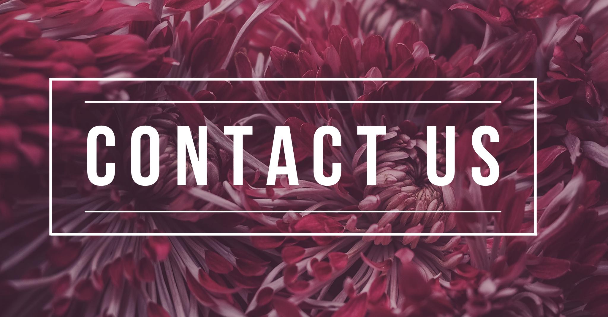 SCF_contact us.png