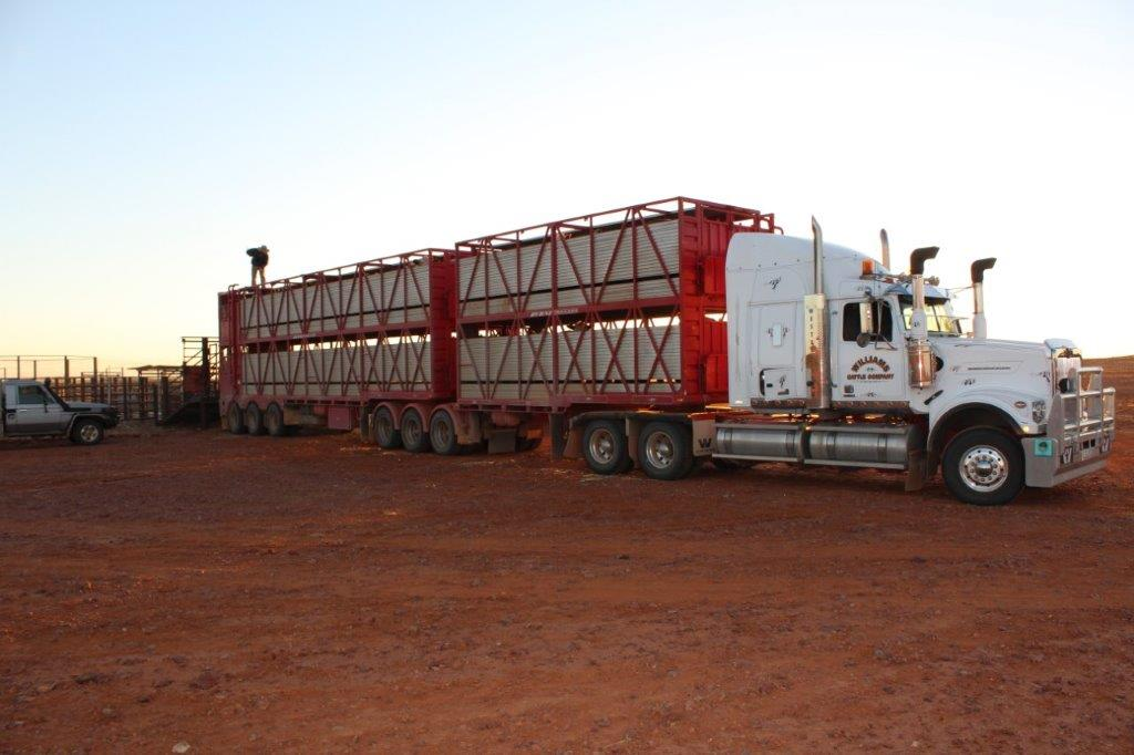 williams-cattle-company-south-australia-cattle-station-sa-plant-and-equipment-trucking-b-double.jpg