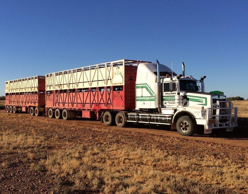 williams-cattle-company-anna-creek-station-south-australia-australia-cattle-station-sa-plant-and-equipment-road-train-truck.jpg