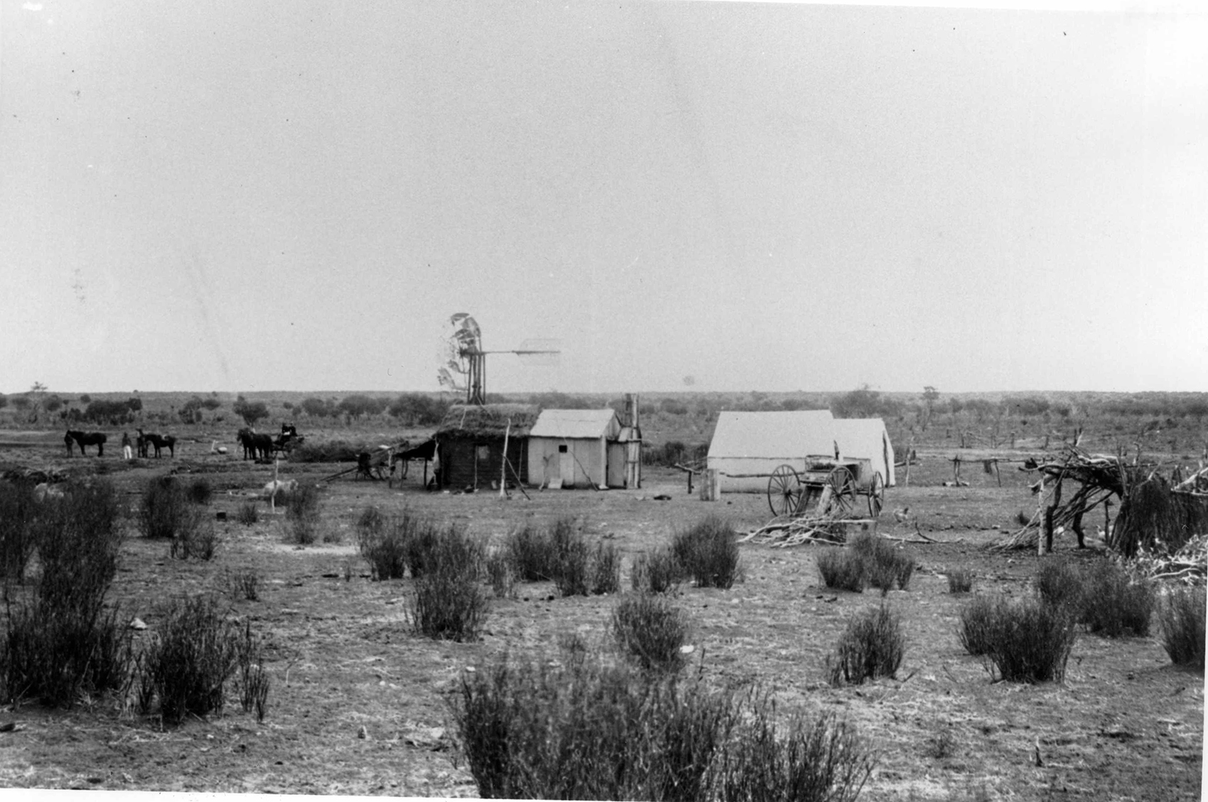 Woolshed on Anna Creek Station, late 1800's