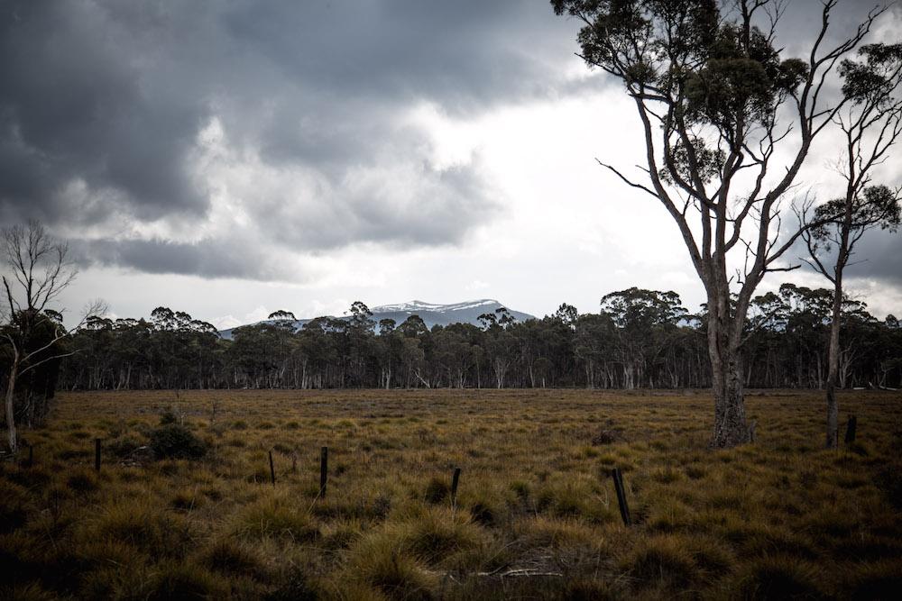 Tasmania-Road-Trip-27-of-29.jpg