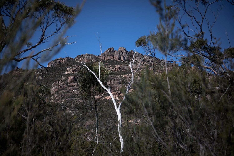 Tasmania-Road-Trip-5-of-29.jpg