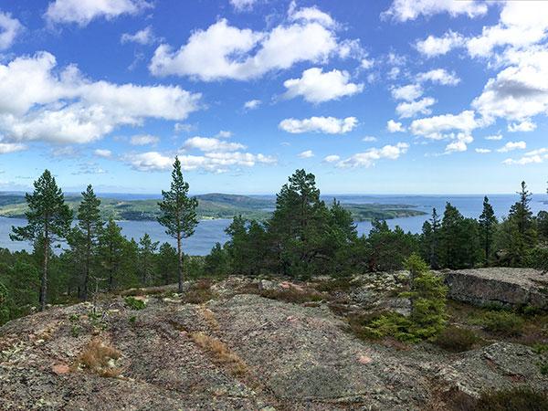 Hiking - Vårdkallberget - Höga Kusten