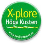 DH17-bollo-XPlore.jpg