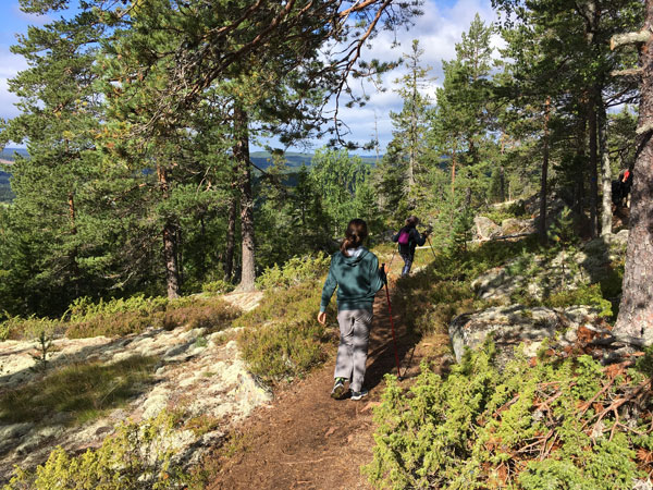 hiking and nordic walking on the Skuleberget