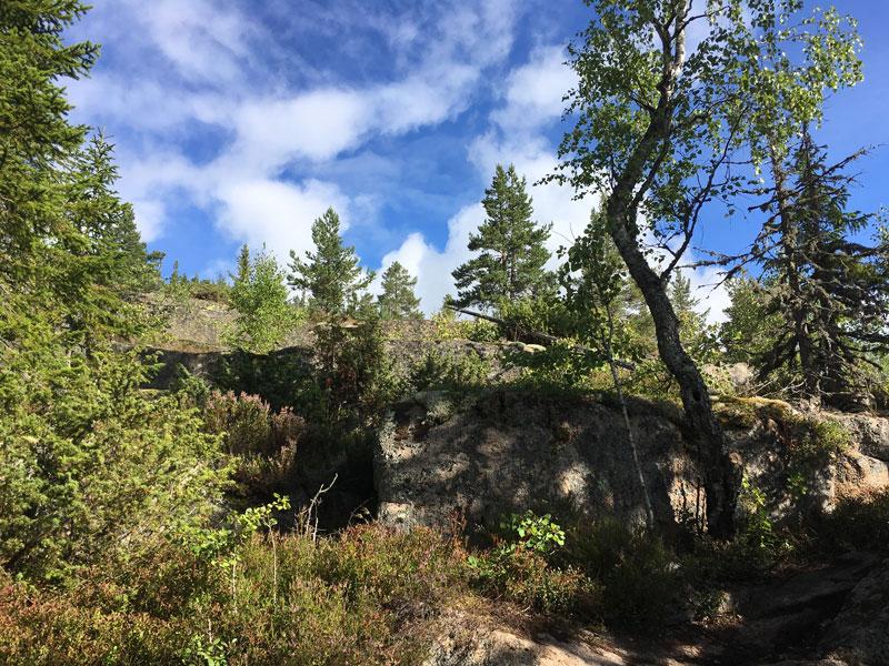 skuleberget-hoga-kusten-stigen-5.jpg