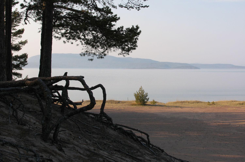 High-Coast-Höga-Kusten-Storsand-3.jpg