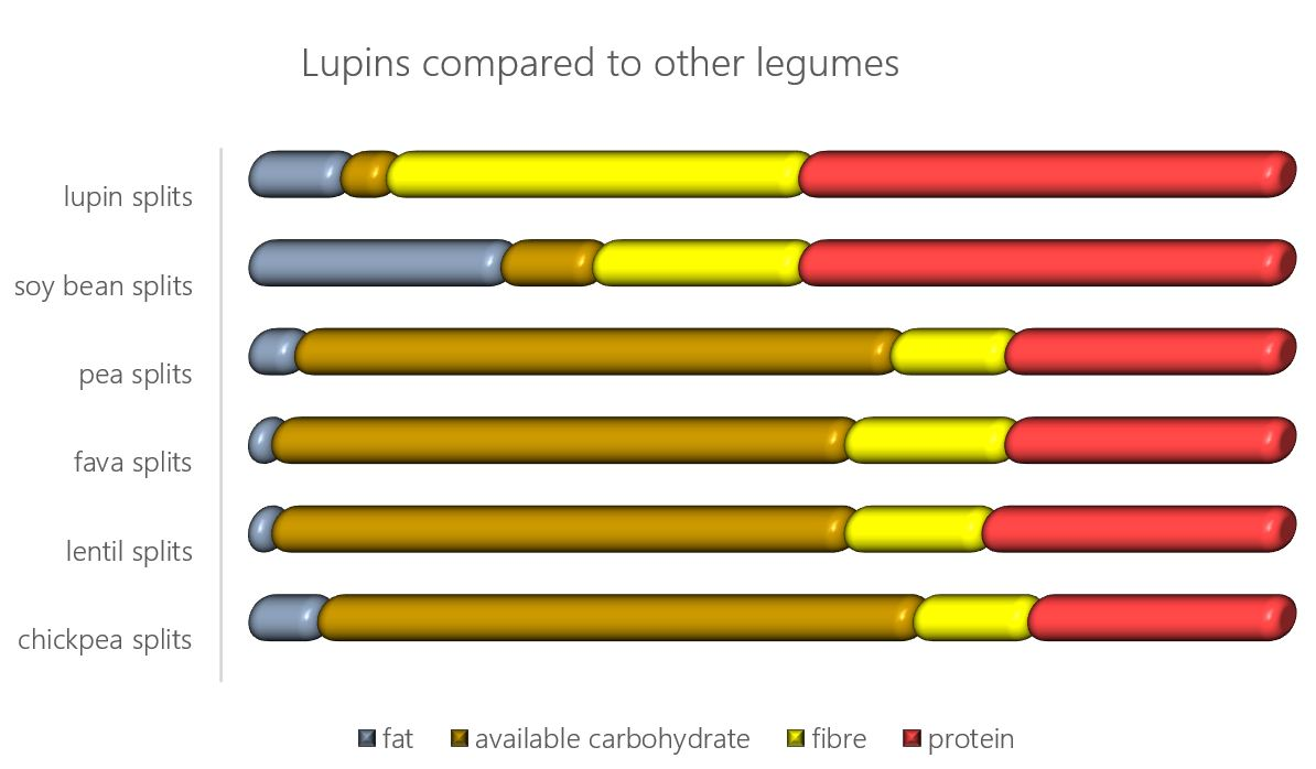 protein in legumes