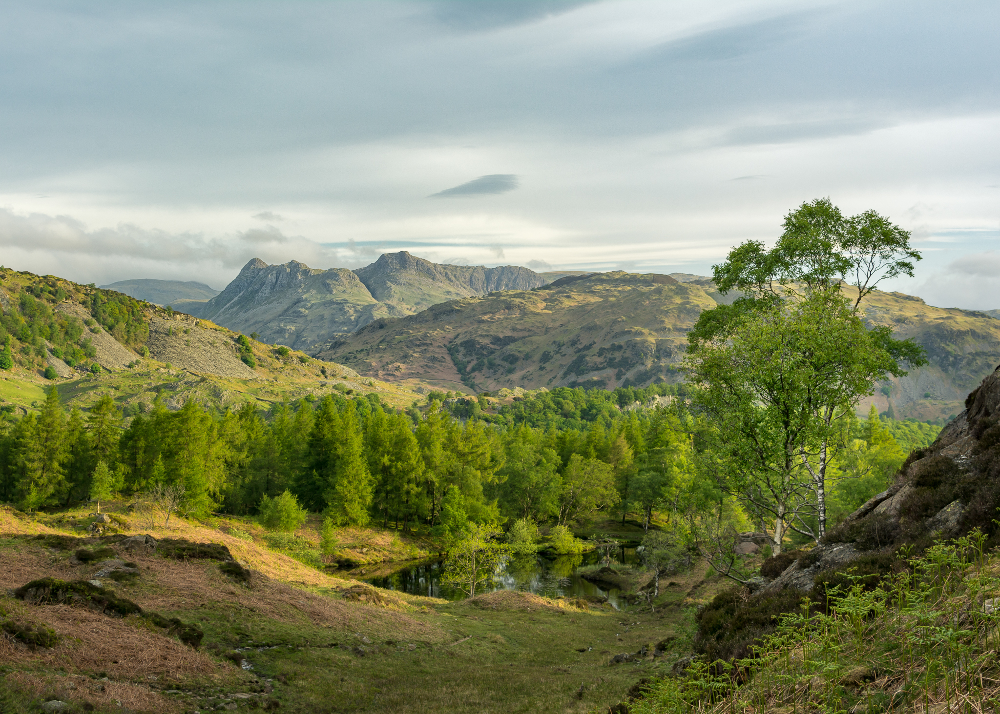 Landscape photography is certainly possible in the summer, but the shots are fewer and further between for me.
