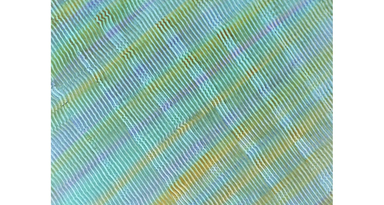 pastepaper-800x1500-04.jpg