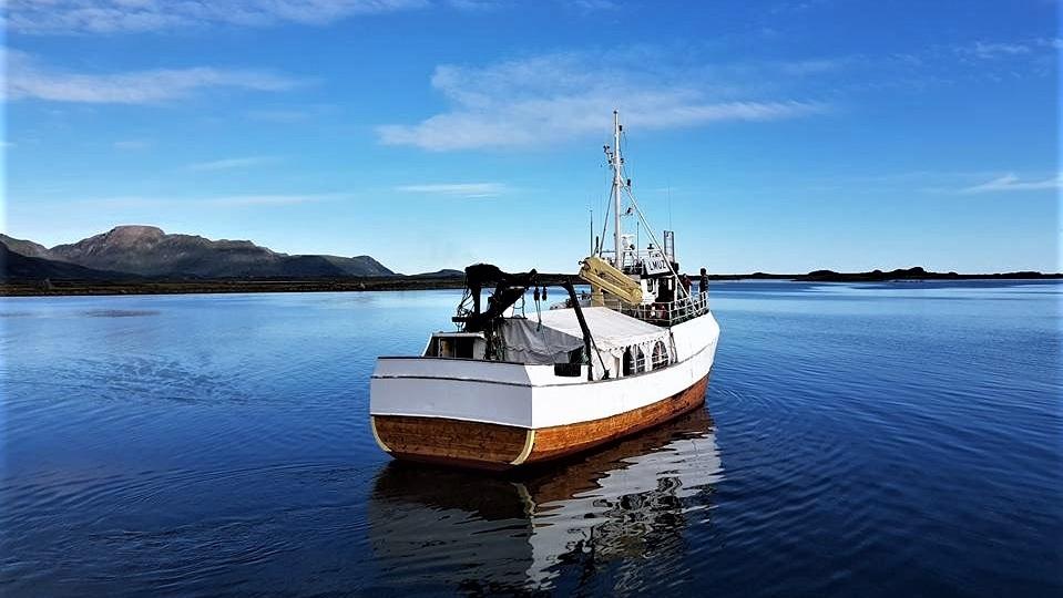 MS BUCCHANEER - For fisketurer og sightseeing - eller rett og slett transport til og fra Risvær for større grupper.
