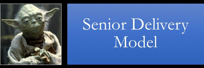 Senior Delivery Model.png
