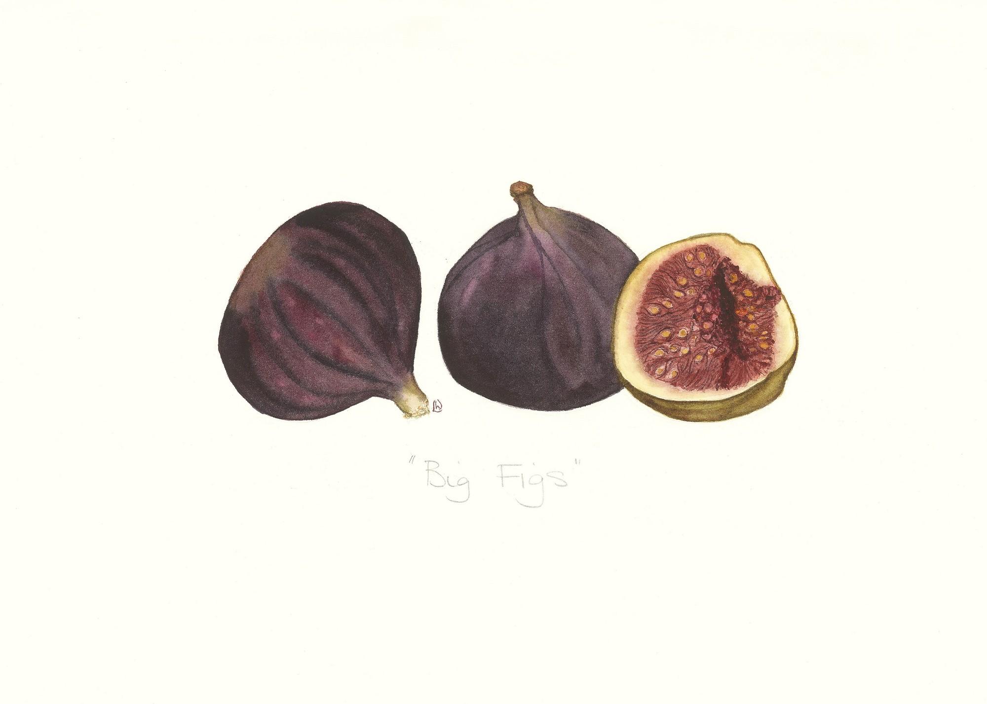 Big Figs, 2012