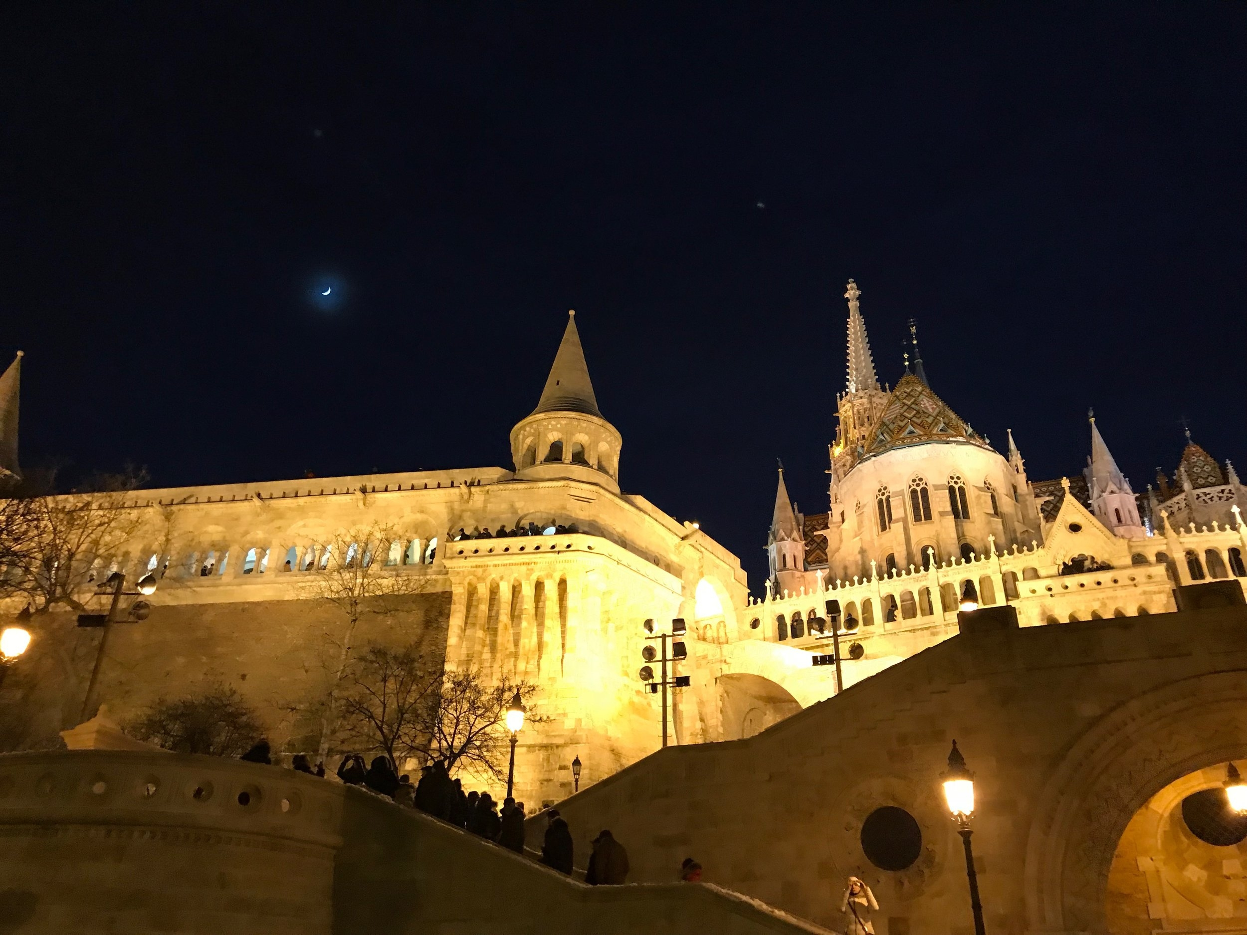 Another dreamlike view in Budapest.