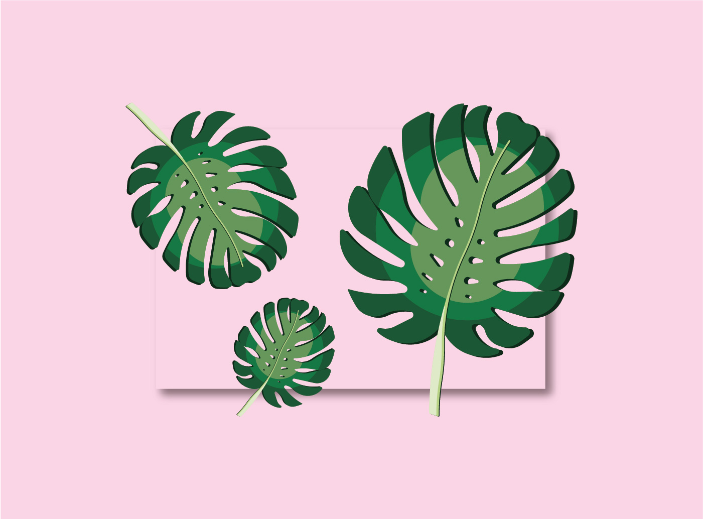 monstera_block_featureimg.jpg