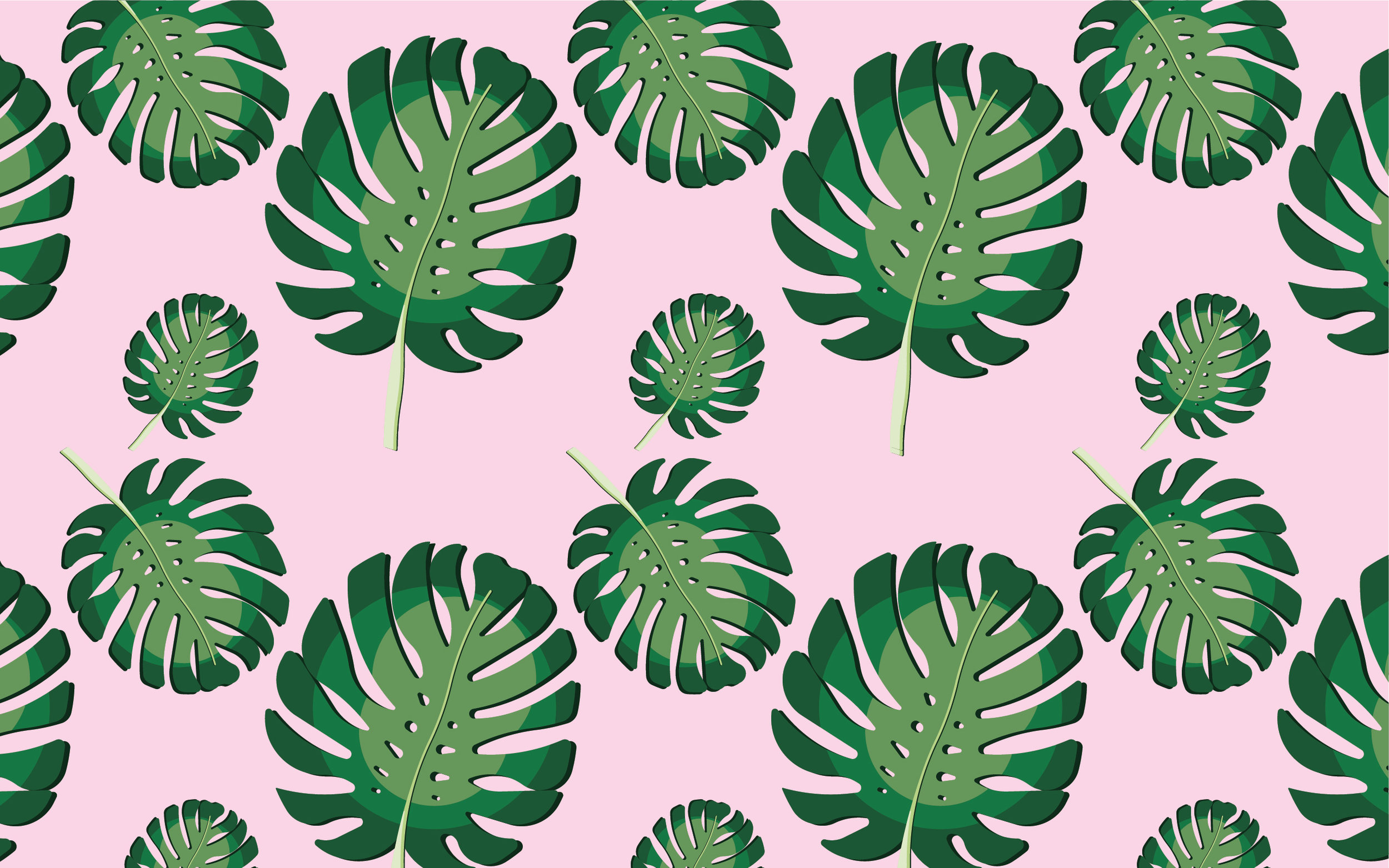 monstera_desktop_background.jpg