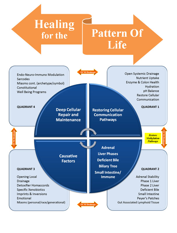 Healing for the Pattern of Life™ Template by Dr. Robert Cass