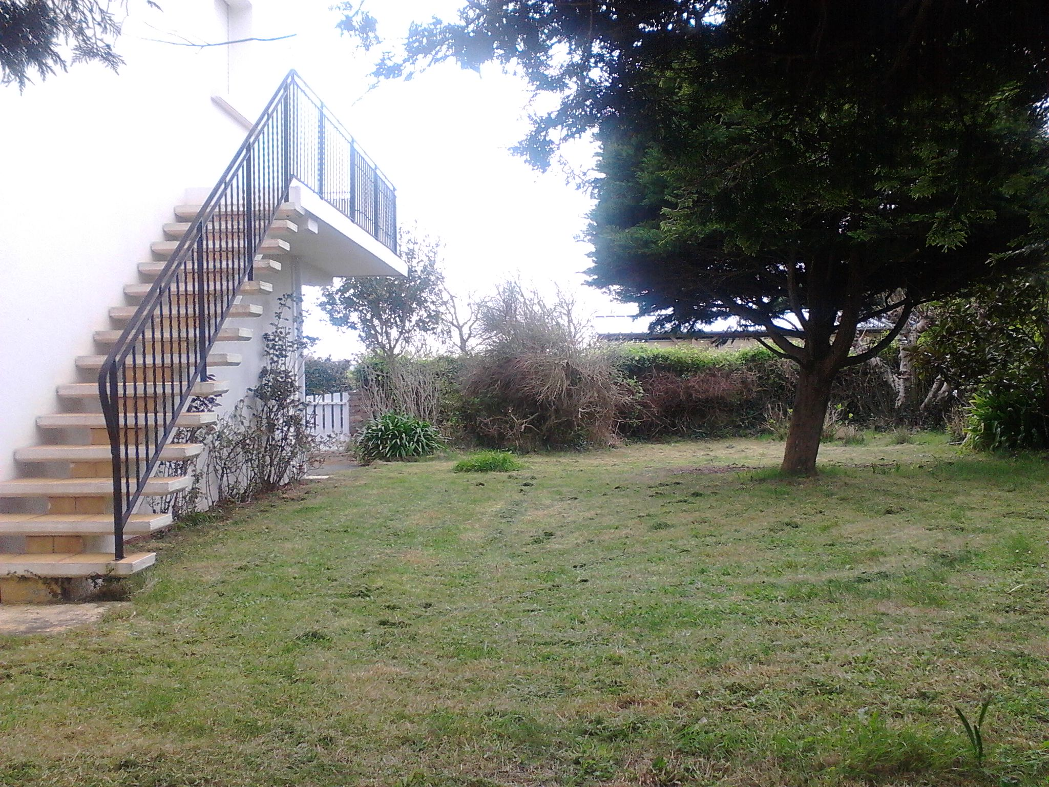 Un cote du Jardin.jpg