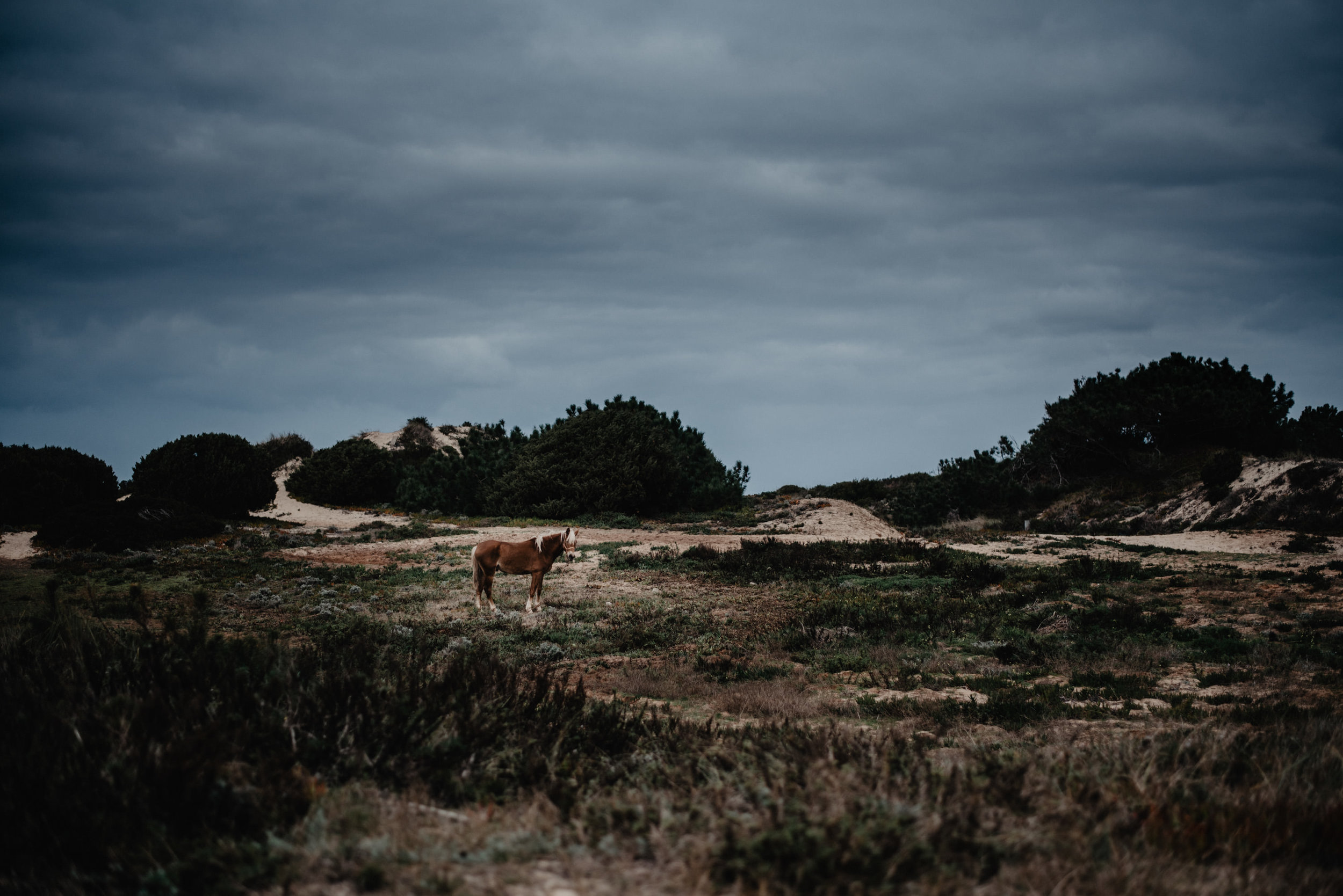 Portugal-Miss Freckles Photography-34.jpg