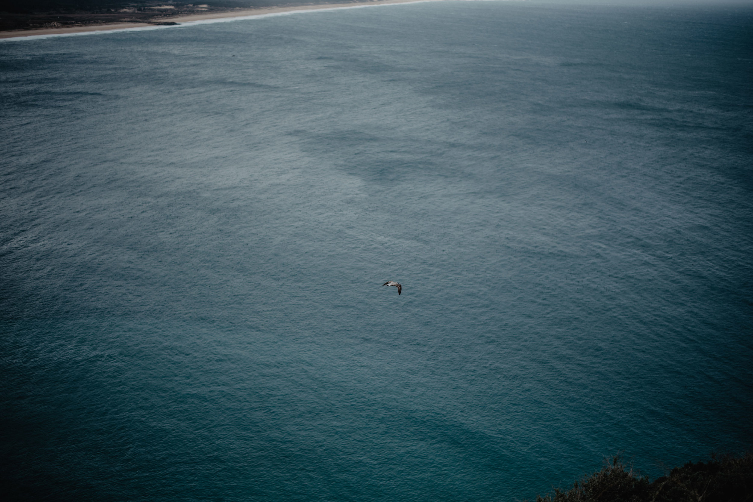 Portugal-Miss Freckles Photography-38.jpg