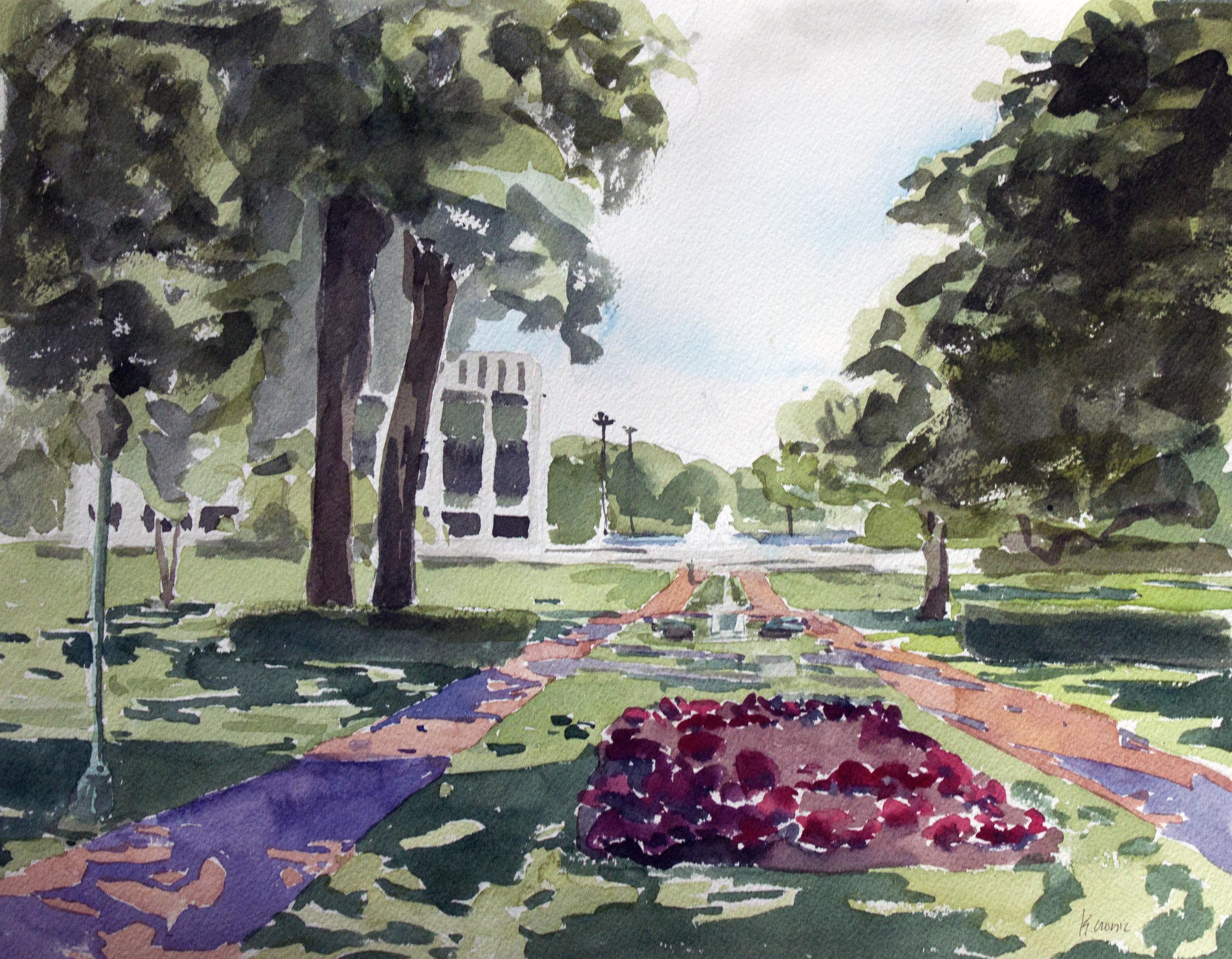 Watercolors of the Yard