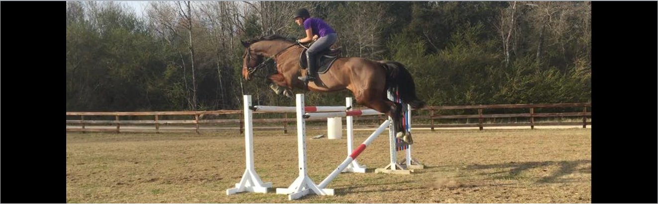 Verden Jumpers Field Raleigh Hunters Jumping Big Oxor 1.PNG