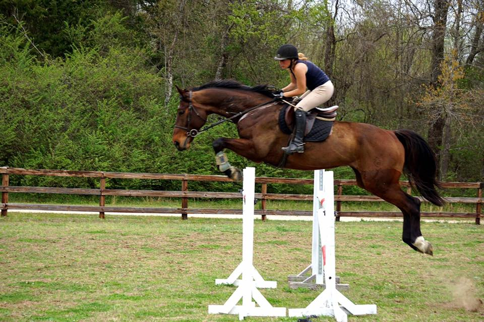 Abby Ruth - ASSISTANT TRAINERA lifelong rider, Abby has shown in Dressage, Eventing, and Jumpers. At 18, she took her Massachusetts Riding Instructor exam and hassince been helping beginner riders move up through the ranks into the show ring for Verden Stables.
