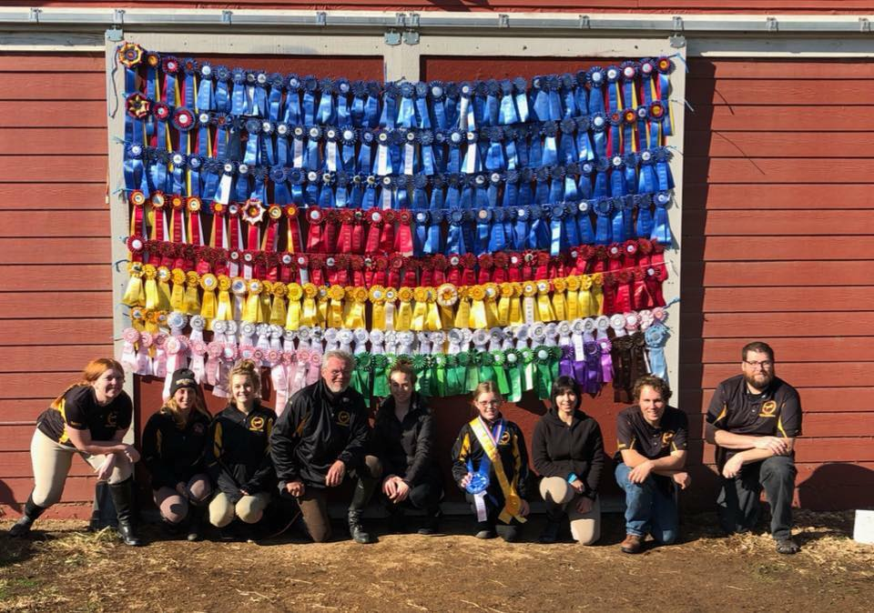 2017 Verden Showjumping Ribbons