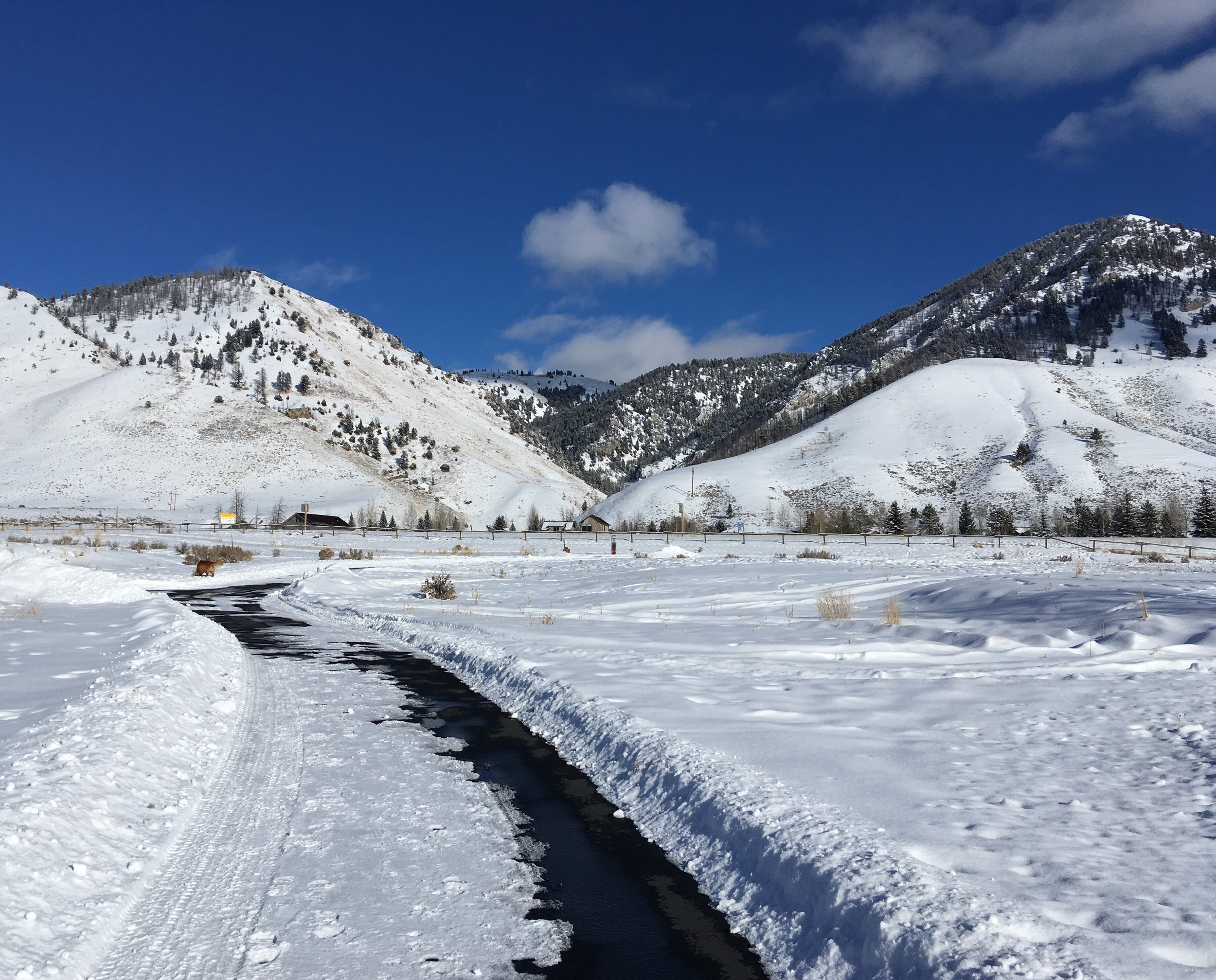 New Year's in Jackson, WY