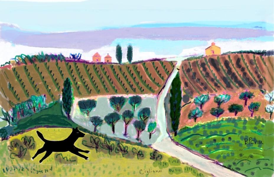 Barbara Perrine Chu - View from Cigliano - Tuscany