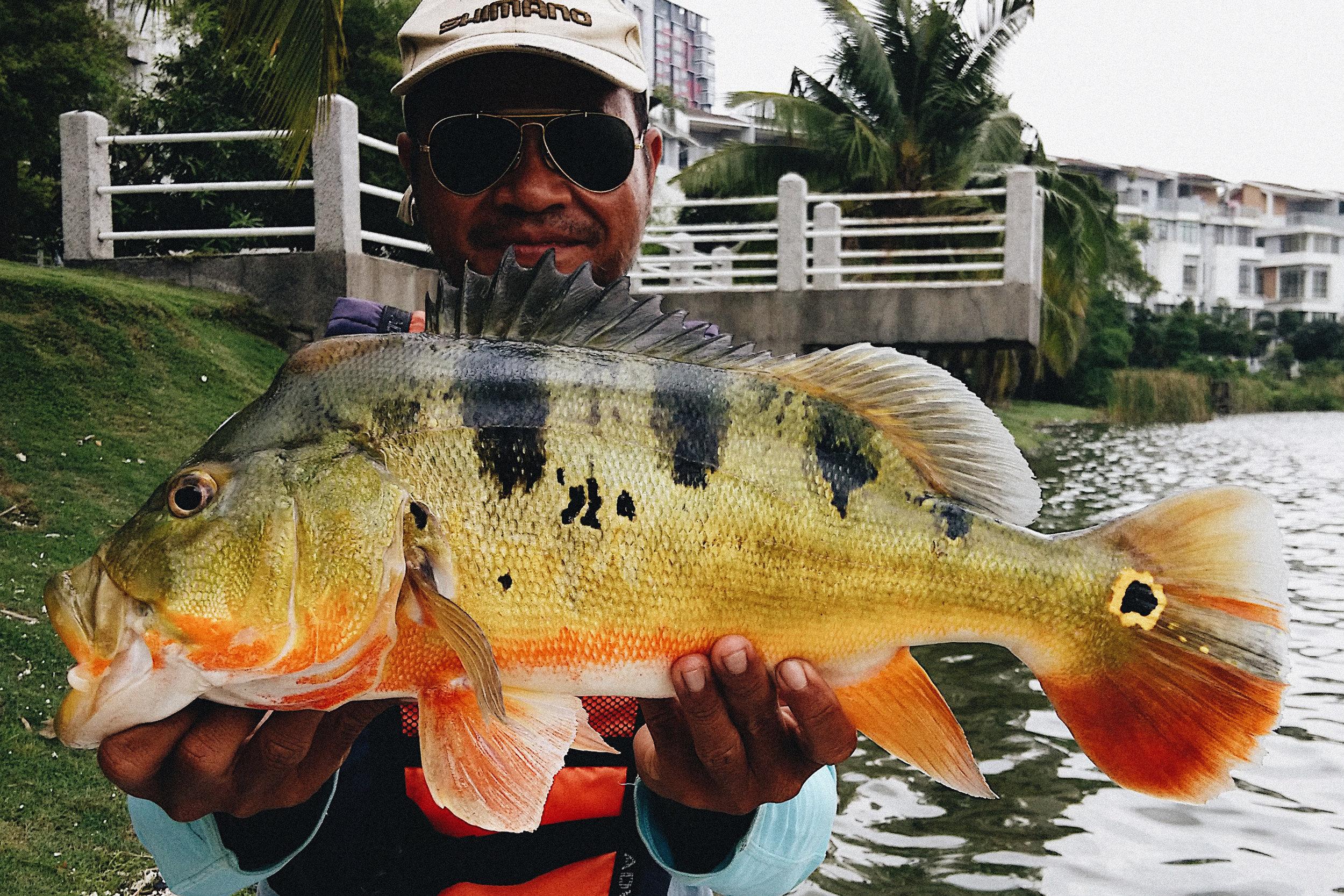 SBSRFC_Prima_Lake_Malaysia_8.jpg