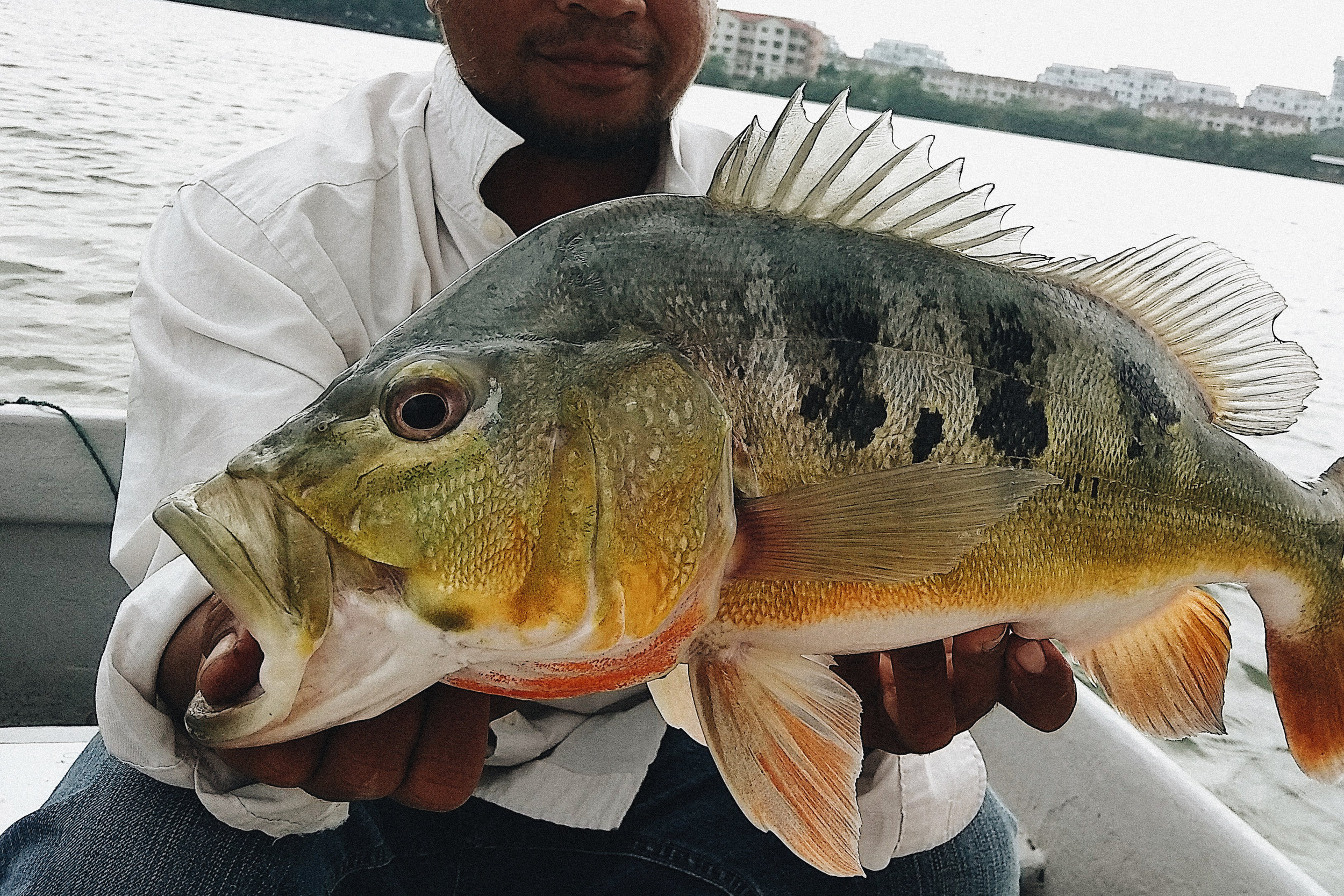 SBSRFC_Prima_Lake_Malaysia_10.jpg