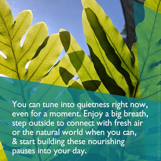 Quiet breath outside - quote
