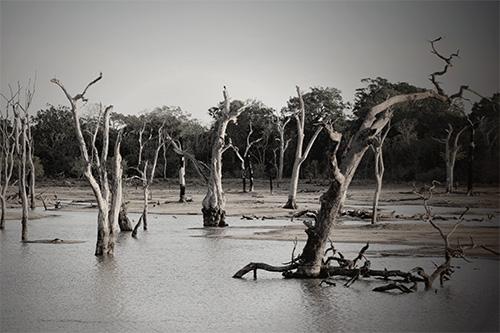 Flood-Disaster.jpg