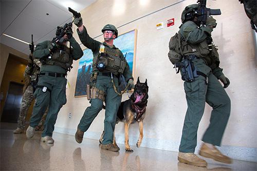 U.S. Army photo by Spc. Bernardus Pol