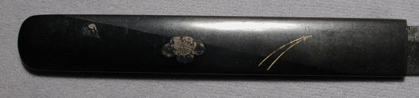 DSCN6200.JPG
