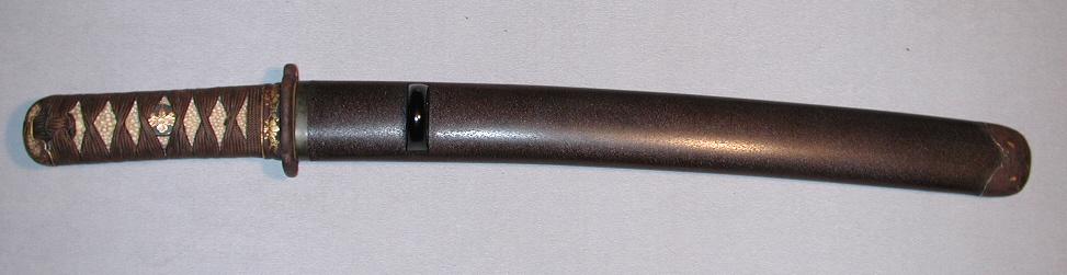 DSCN6230.JPG